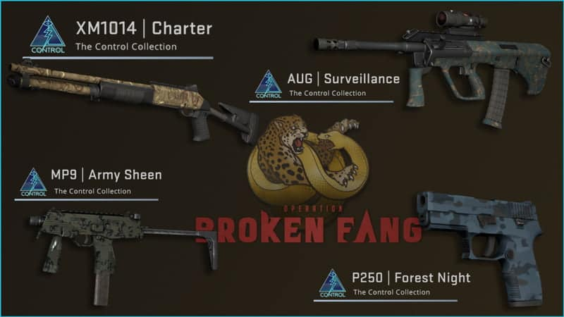 Broken Fang's Control Case is filled with quality skins, new Fade 2